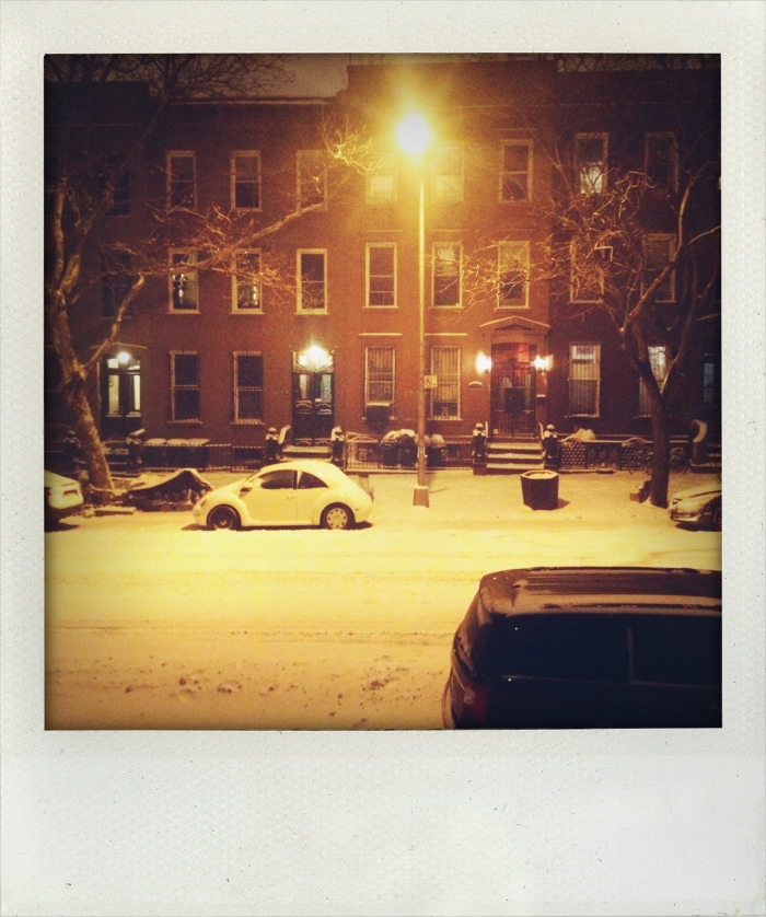 Brooklyn, New York Snowstorm II